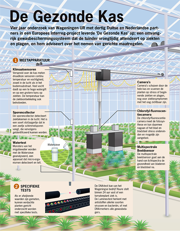 infographics foods and agriculture rabobank